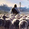 Jesus Cristo, Rei do Universo (Mt 25,31-46)
