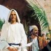 Hosana ao Filho de Davi (Mc 14, 1-15,47)