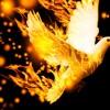 """""""Assim como o Pai me enviou também eu vos envio: Recebei o Espírito Santo!"""""""